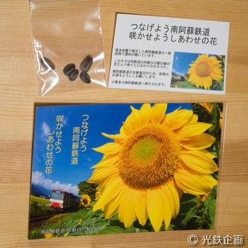 IMGP609301.jpg
